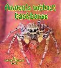 Animals Without Backbones