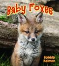 Baby Foxes (It's Fun to Learn About Baby Animals)