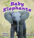 Baby Elephants (It's Fun to Learn About Baby Animals)