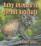 Baby Animals in Forest Habitats (Habitats of Baby Animals)