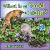 What Is a Food Chain? (My World)