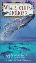 Whales, Dolphins and Porpoises - Erich Hoyt - Hardcover