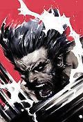 Wolverine Soultaker