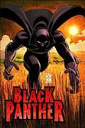 Black Panther Who Is the Black Panther