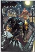 Black Panther : The Man Without Fear - Urban Jungle