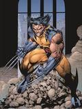 Essential Wolverine - Volume 2