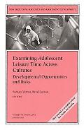 Examining Adolescent Leisure Time Across Cultures Developmental Opportunities and Risks