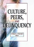 Culture, Peers, and Delinquency