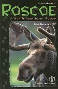 Roscoe: A North American Moose