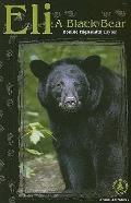 Eli : A Black Bear