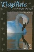 Daphne A Trumpeter Swan