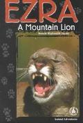 Ezra A Mountain Lion