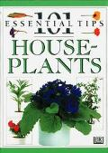 House Plants (101 Essential Tips Series)