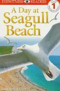 Day at Seagull Beach
