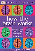 How the Brain Works A Beginner's Guide to the Mind and Consciousness