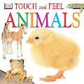 Touch and Feel Animals