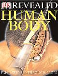 Human Body Revealed Revealed