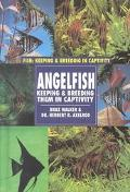 Angelfish: Keeping and Breeding Them in Captivity - Braz Walker - Hardcover