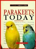 Parakeets Today A Complete Authoritative Guide