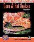 Corn & Rat Snakes