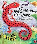 Salamander Rock