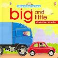 Big and Little Look and Say