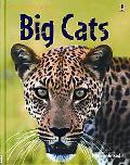 Big Cats (Usborne Discovery)