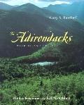 Adirondacks Wild Island of Hope