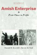 Amish Enterprise From Plows to Profits