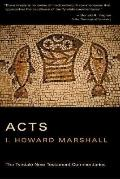 Acts of the Apostles An Introduction and Commentary