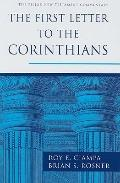 The First Letter to the Corinthians (The Pillar New Testament Commentary)