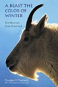 Beast the Color of Winter The Mountain Goat Observed