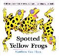 Spotted Yellow Frogs Fold-Out Fun With Patterns, Colors, 3-D Shapes, and Animals