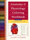 Anatomy & Physiology Coloring Workbook A Complete Study Guide
