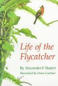 Life of the Flycatcher, Vol. 3 - Alexander F. Skutch - Paperback