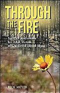 Through The Fire Spiritual Resoration For Adult Victims Of Childhood Sexual Abuse