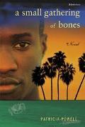 Small Gathering of Bones