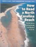 How to Read a North Carolina Beach Bubble Holes, Barking Sands, and Rippled Runnels