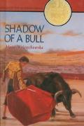 Shadow of a Bull