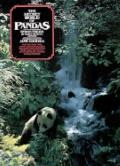 The Secret World of Pandas - Byron Preiss - Paperback