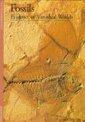 Fossils Evidence of Vanished Worlds