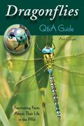 Dragonflies: a Q&a Guide : Fascinating Facts about Their Life in the Wild