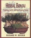 Herbal Bonsai Practicing the Art With Fast-Growing Herbs
