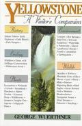 Yellowstone A Visitor's Companion