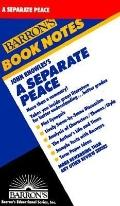 Separate Peace (Barron's Book Notes) - Neil Baldwin - Paperback