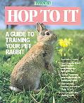 Hop to It A Guide to Training Your Pet Rabbit
