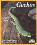 Geckos Everything About Selection, Care, Nutrition, Diseases, Breeding, and Behavior