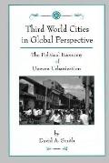 Third World Cities in Global Perspective The Political Economy of Uneven Urbanization