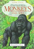 Visual Introduction to Monkeys and Apes
