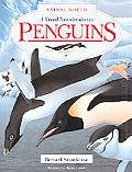 Visual Introduction to Penguins